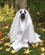 Friendly Ghost Dog Homemade Costume