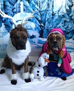 Frozen Dogs Costumes