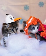 Frozen Cats Homemade Costumes