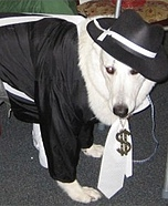 Gangsta Dog Costume