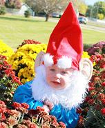 Garden Gnome Baby Costume Idea