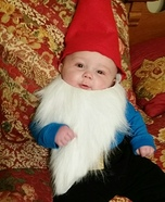 Garden Gnome Baby Homemade Costume