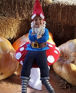 Garden Gnome sitting on a Mushroom Homemade Costume