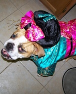 Geisha Girl Dog Homemade Costume