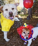 Georgie and Pennywise Dogs Homemade Costume
