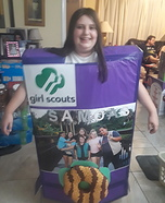Girl Scout Cookie Box Homemade Costume