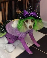 Glinda The Good Witch of The North Dog Homemade Costume