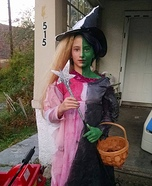 Glinda / Wicked Witch Homemade Costume