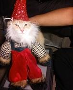 Gnome Cat Homemade Costume