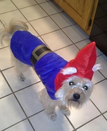 Gnome Dog Costume