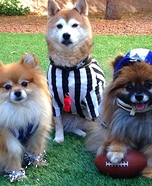 Go Team! Dogs Costume