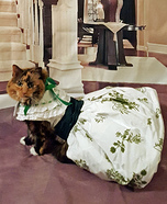 Gone with the Wind Cat Homemade Costume