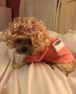 Granny Dog Homemade Costume