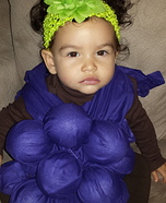 Grapes Baby Costume