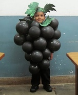 Homemade Grapes Costume