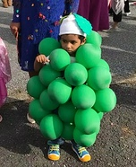 Grapes Homemade Costume