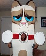 Grumpy Cat Homemade Costume