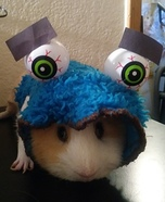 Guinea Pig Cookie Monster Homemade Costume