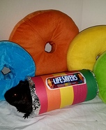 Guinea Pig Lifesavers Homemade Costume