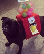 Creative costume ideas for dogs: Gumball Machine Dog Costume