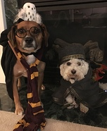 Hairy Pawter & Pawfessor Dumbledog Homemade Costume