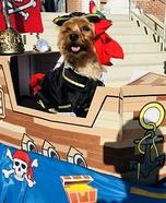 Halo the BrownBeard Dog Homemade Costume