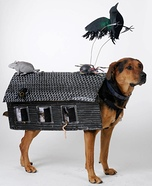 Homemade Haunted House Dog Costume