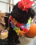 Hawaiian Dog Homemade Costume