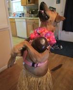 Hawaiian Hula Dancer Dog Costume