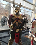 Hawkman Homemade Costume