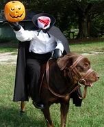 Headless Horseman's Horse Dog Homemade Costume