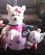 Hello Kitty Homemade Costume