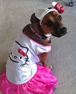 Hello Kitty Puppy Homemade Costume