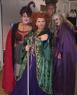 Hocus Pocus Sisters Homemade Costume