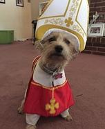 Holy Hound Dog's Costume
