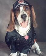 Biker Dog Costume