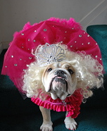 Honey Boo Boo Dog Costume