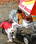 Hot Dogs Homemade Costume