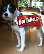 Hot TaMolly Costume