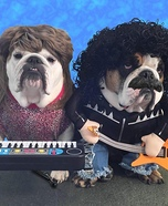 Howl & Oates Dogs Homemade Costume