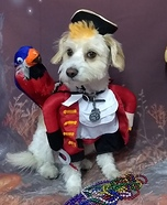 Iggy Wrigley Pirate Costume