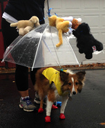Creative costume ideas for dogs: It's Raining Cats and Dogs Costume