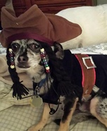 Jack Sparrow Homemade Dog Costume