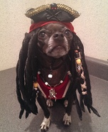 Creative costume ideas for dogs: Jack Sparrow and the Pirate Ship