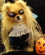 Creative costume ideas for dogs: Jareth from Labyrinth Dog Costume