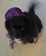Jellyfish Dog Homemade Costume
