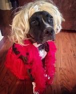 Joan Rivers Dog Homemade Costume