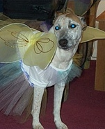 Halloween Fairy Costume