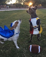 Katy Perry and Left Shark Dogs Homemade Costume