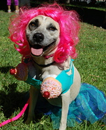Katy Perry in California Gurls Dog Costume